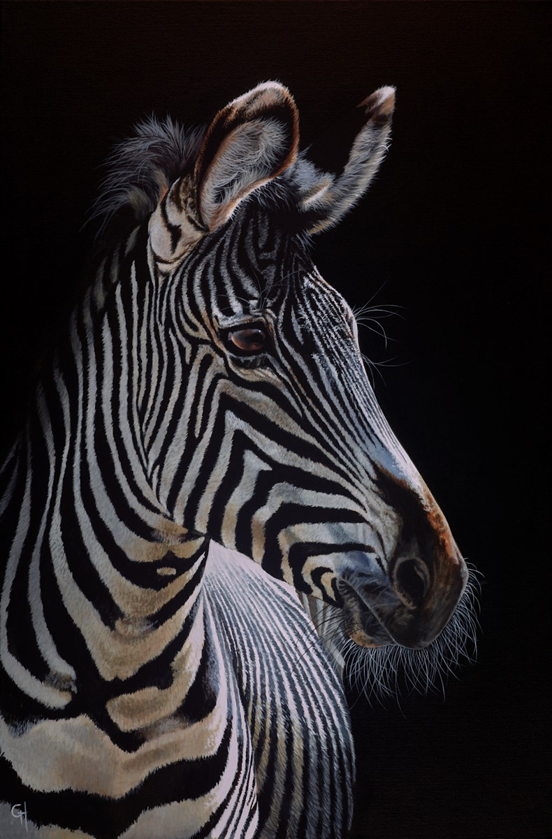 South African Stripes